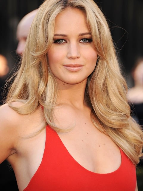 Indian Remy Blonde Clip In Hair Extensions VGE10012